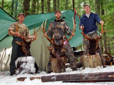 Elk Camps