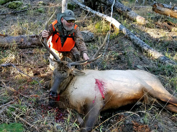 Rifle Bull Elk 2018